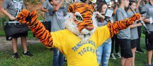 Tanga Tiger